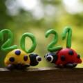 Přihlášky na tábory 2021 spuštěny!